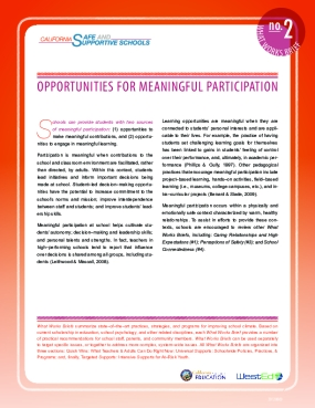 What Works Brief #2: Opportunities for Meaningful Participation